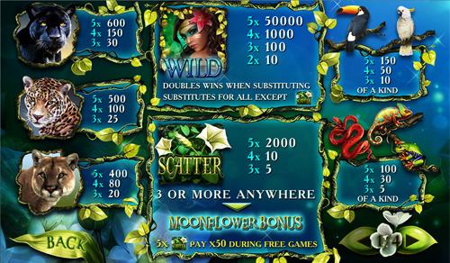 free Secrets of the Amazon slot paytable
